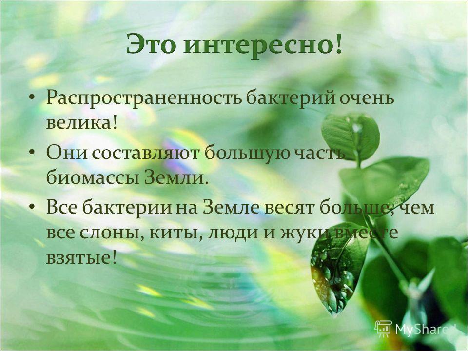 Природа бывает неживая и …… Живая природа представлена следующими царствами…… Царство растений представлено ….. Царство животных представлено…. Представителями царства грибов являются….