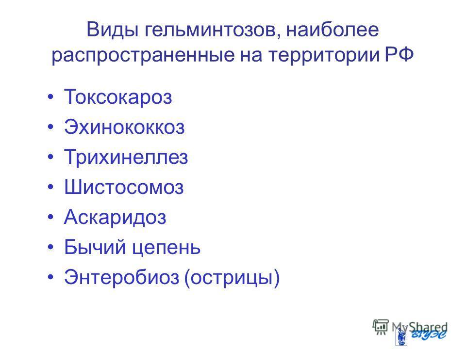 Виды гельминтозов, наиболее распространенные на территории РФ Токсокароз Эхинококкоз Трихинеллез Шистосомоз Аскаридоз Бычий цепень Энтеробиоз (острицы)