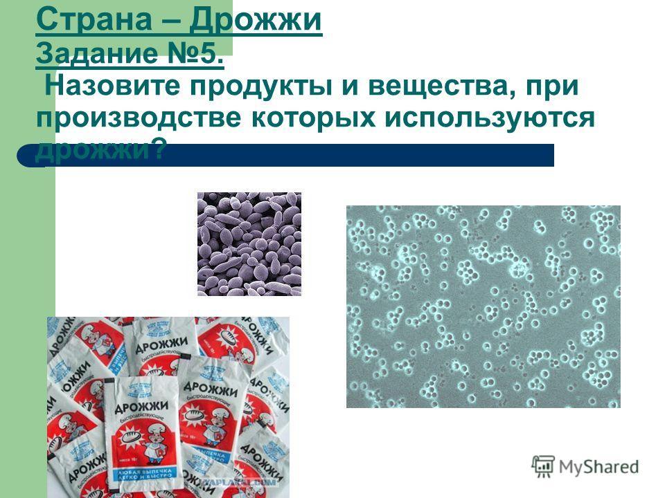 Страна – Дрожжи Задание 5. Назовите продукты и вещества, при производстве которых используются дрожжи?