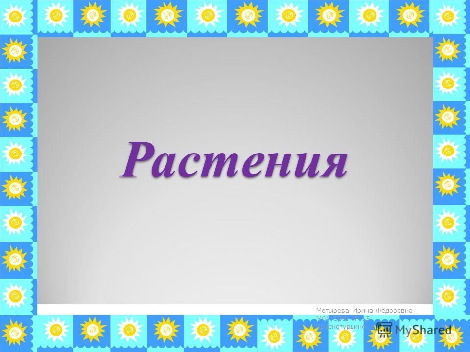 Растения 24 Мотырева Ирина Фёдоровна МОУ СОШ 15 Краснотурьинск