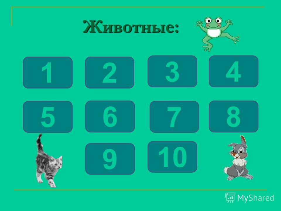 Животные: Животные: 12 6 5 34 9 8 7 10 12 6 5 34 9 8 7