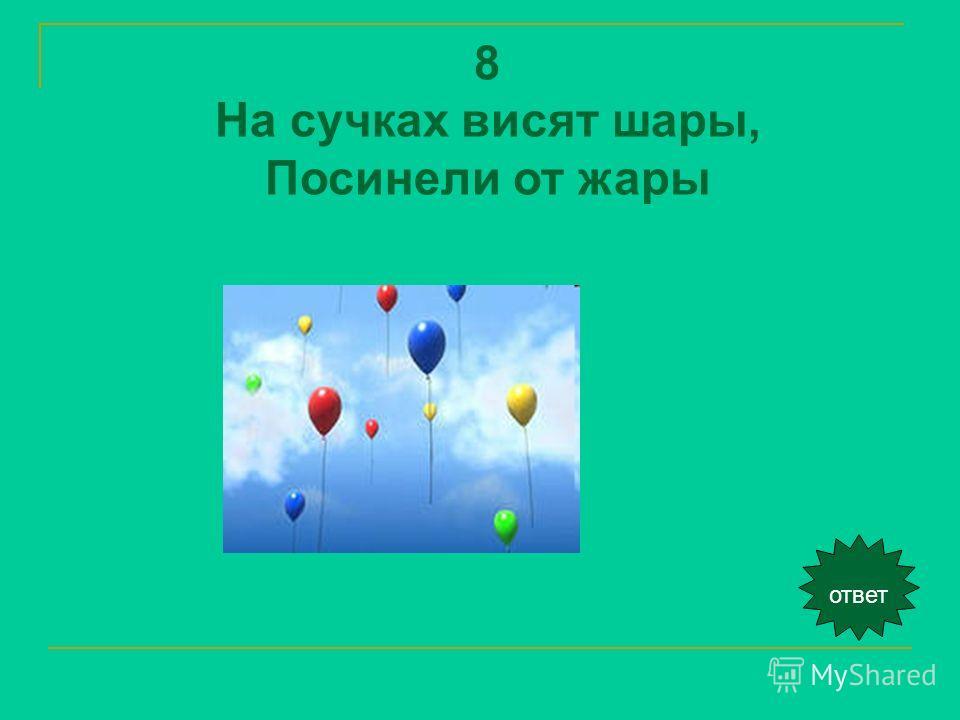 ответ 8 На сучках висят шары, Посинели от жары