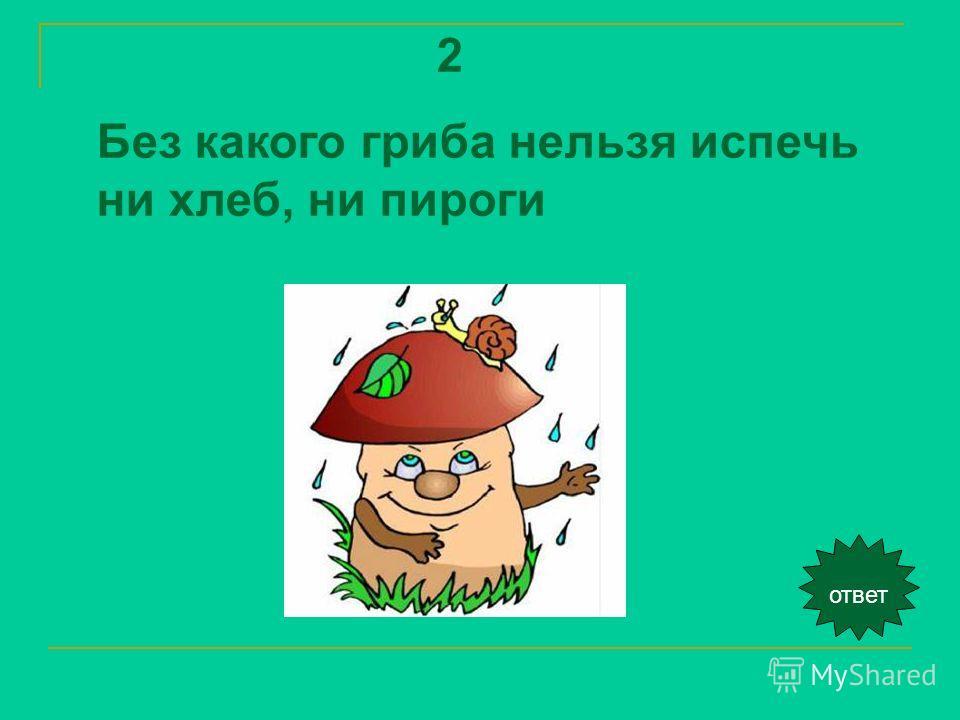 2 Без какого гриба нельзя испечь ни хлеб, ни пироги ответ