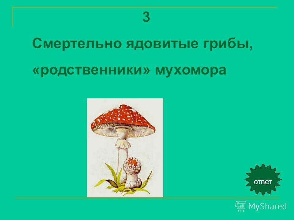 ответ 3 Смертельно ядовитые грибы, «родственники» мухомора