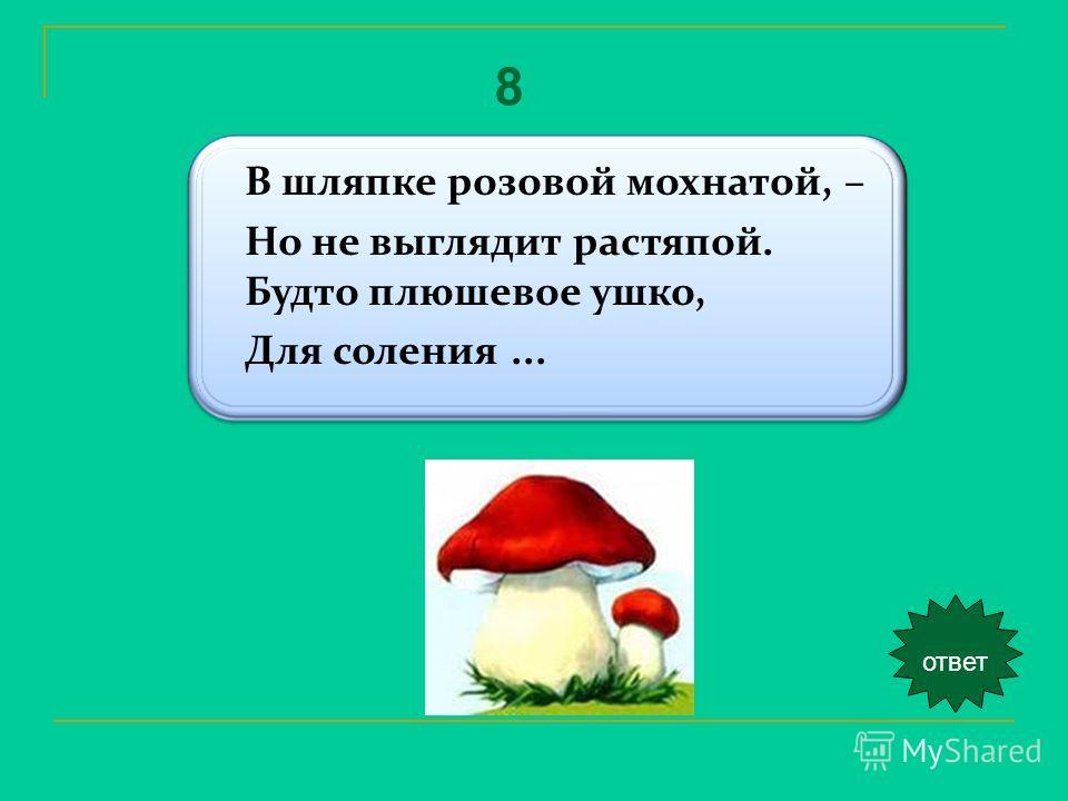 В шляпке розовой мохнатой, – Но не выглядит растяпой. Будто плюшевое ушко, Для соления... ответ 8