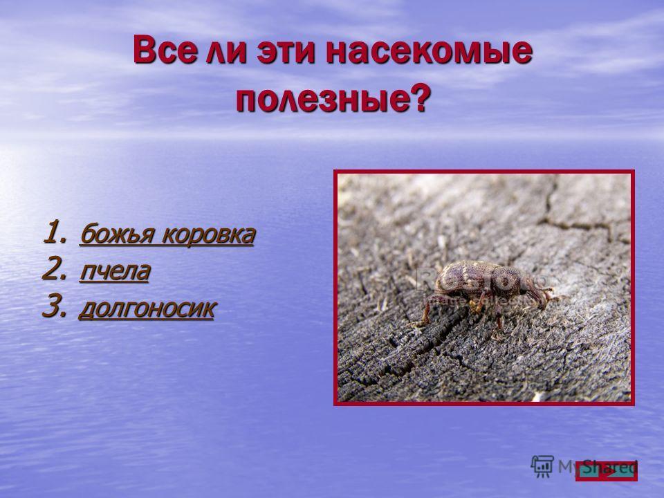 Все ли эти насекомые полезные? 1. божья коровка божья коровка божья коровка 2. пчела пчела 3. долгоносик долгоносик