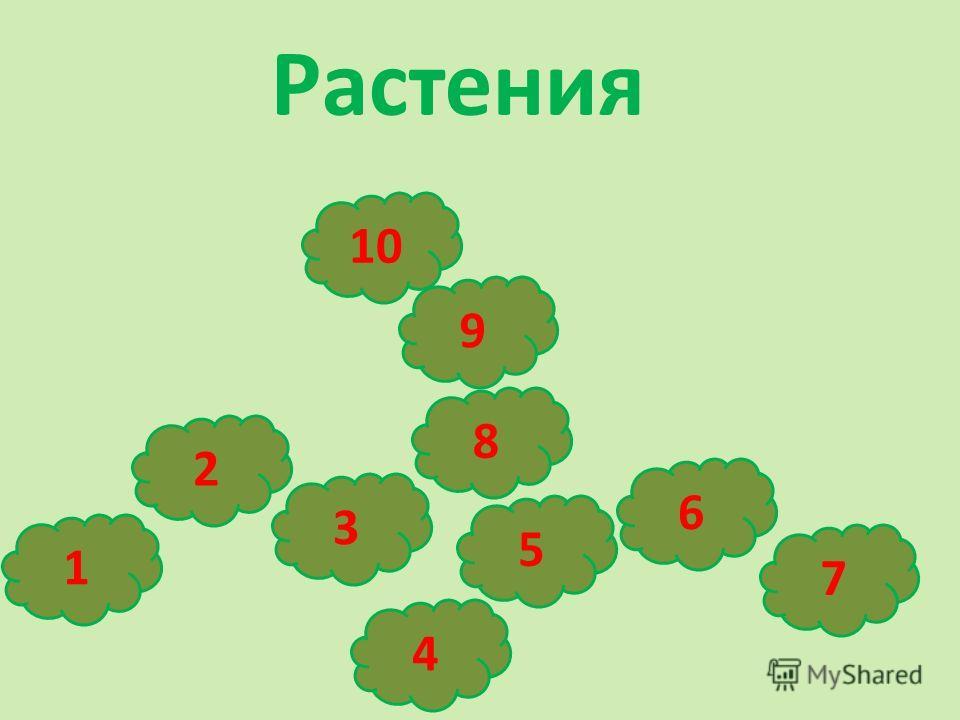 Растения 4 3 2 1 10 9 7 8 6 5