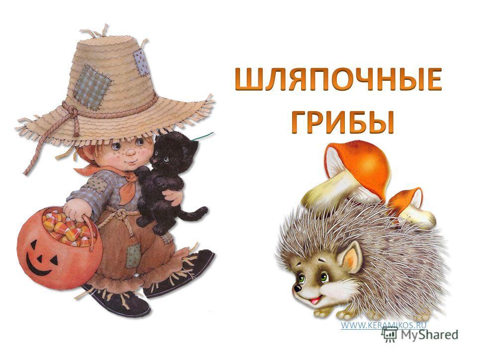 WWW.KERAMIKOS.RU