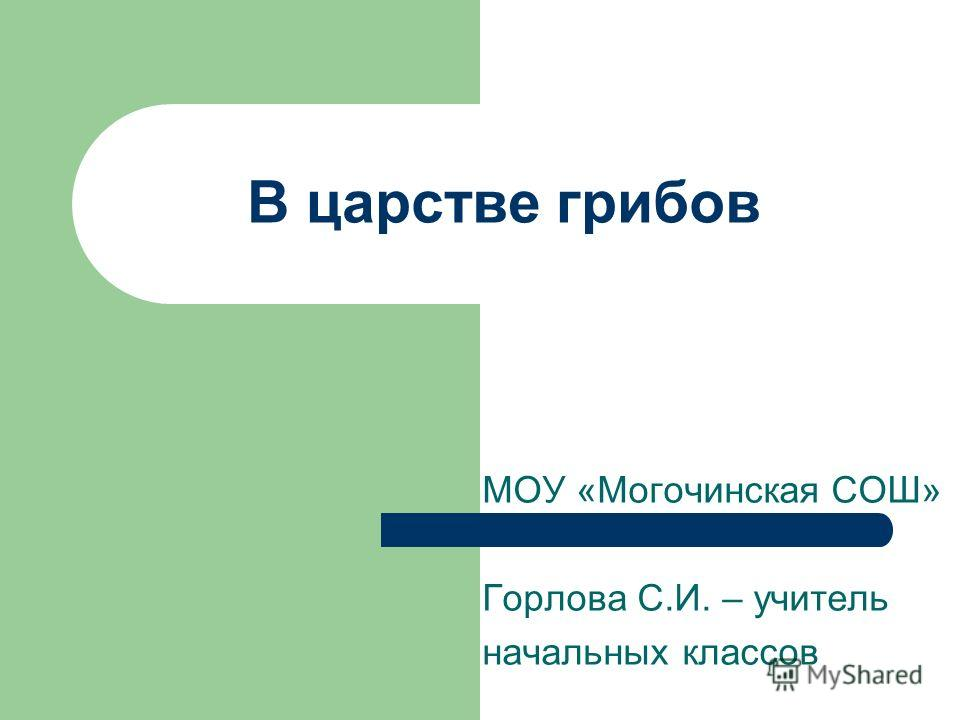 В царстве грибов МОУ «Могочинская СОШ» Горлова С.И. – учитель начальных классов