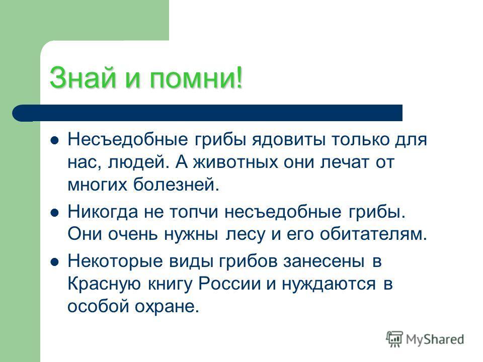 Знай и помни! Несъедобные грибы ядовиты только для нас, людей. А животных они лечат от многих болезней. Никогда не топчи несъедобные грибы. Они очень нужны лесу и его обитателям. Некоторые виды грибов занесены в Красную книгу России и нуждаются в осо