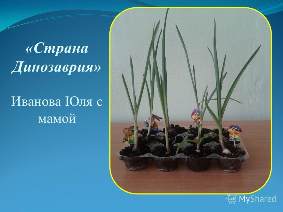 «Страна Динозаврия» Иванова Юля с мамой