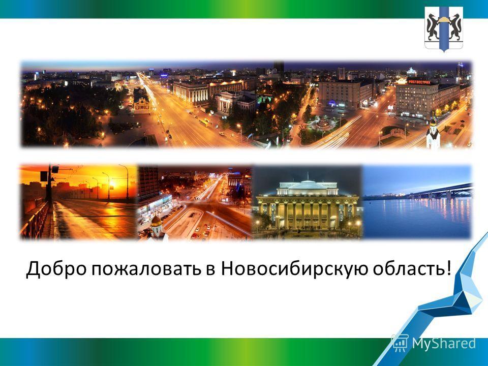 Добро пожаловать в Новосибирскую область!