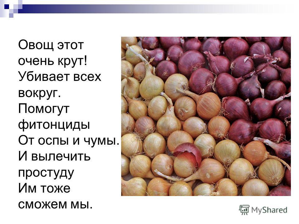 Овощ этот очень крут! Убивает всех вокруг. Помогут фитонциды От оспы и чумы. И вылечить простуду Им тоже сможем мы.