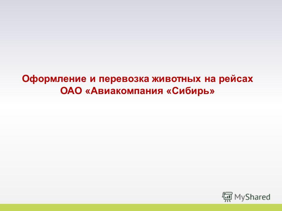 17 Оформление и перевозка животных на рейсах ОАО «Авиакомпания «Сибирь»