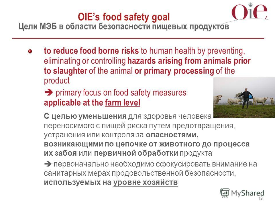 12 OIEs food safety goal Цели МЭБ в области безопасности пищевых продуктов to reduce food borne risks to human health by preventing, eliminating or controlling hazards arising from animals prior to slaughter of the animal or primary processing of the