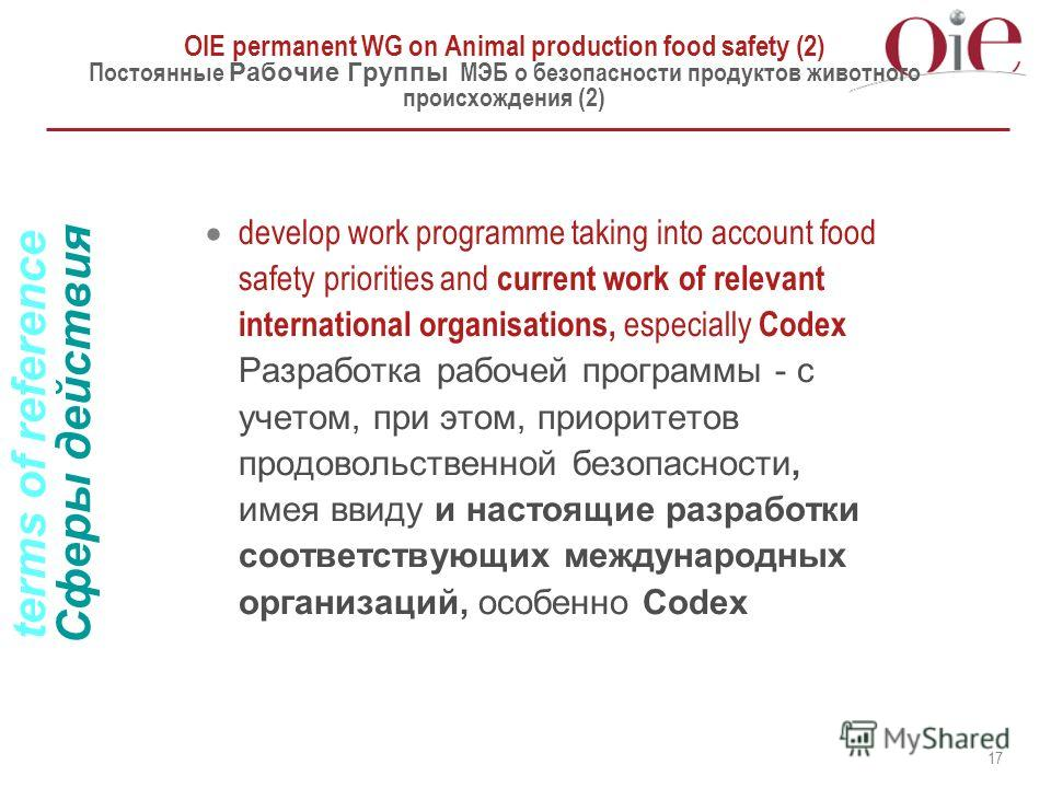 17 OIE permanent WG on Animal production food safety (2) Постоянные Рабочие Группы МЭБ о безопасности продуктов животного происхождения (2) develop work programme taking into account food safety priorities and current work of relevant international o
