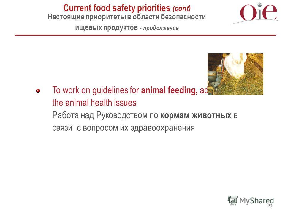 23 To work on guidelines for animal feeding, addressing the animal health issues Работа над Руководством по кормам животных в связи с вопросом их здравоохранения Current food safety priorities (cont) Настоящие приоритеты в области безопасности ищевых