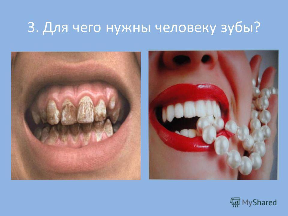 3. Для чего нужны человеку зубы?