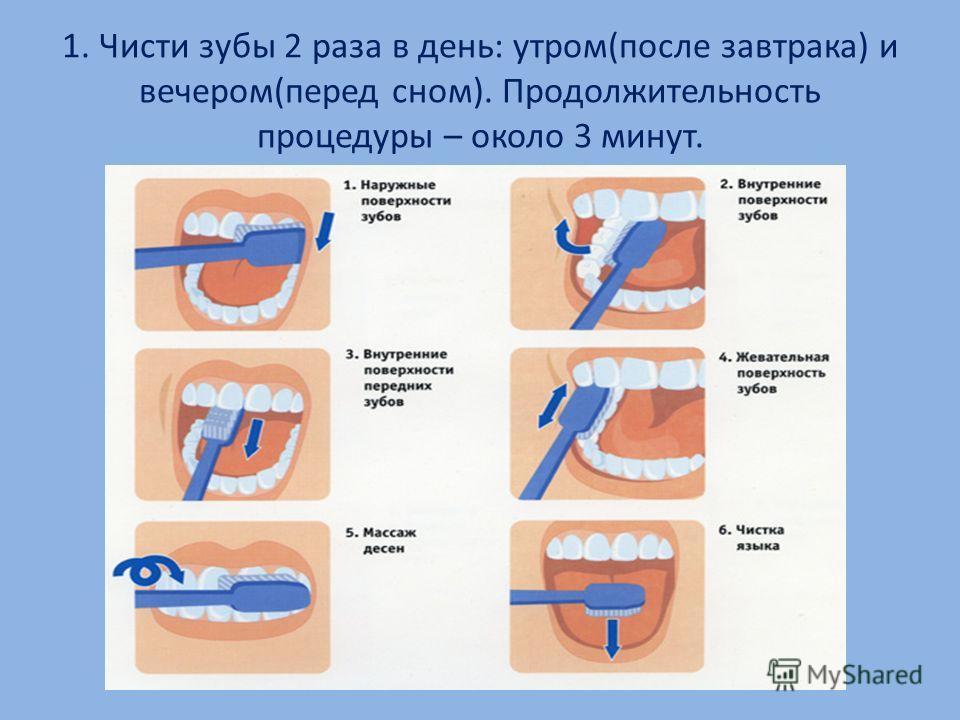 1. Чисти зубы 2 раза в день: утром(после завтрака) и вечером(перед сном). Продолжительность процедуры – около 3 минут.