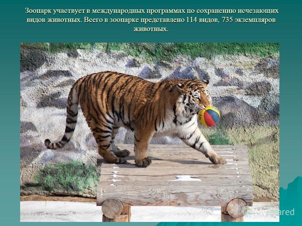 Зоопарк участвует в международных программах по сохранению исчезающих видов животных. Всего в зоопарке представлено 114 видов, 735 экземпляров животных. Зоопарк участвует в международных программах по сохранению исчезающих видов животных. Всего в зоо