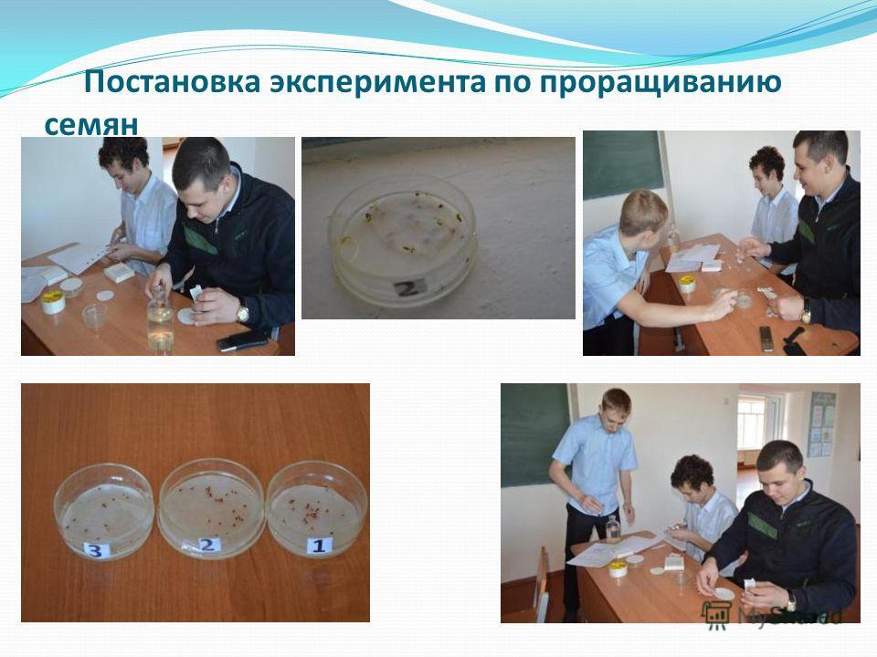 Постановка эксперимента по проращиванию семян