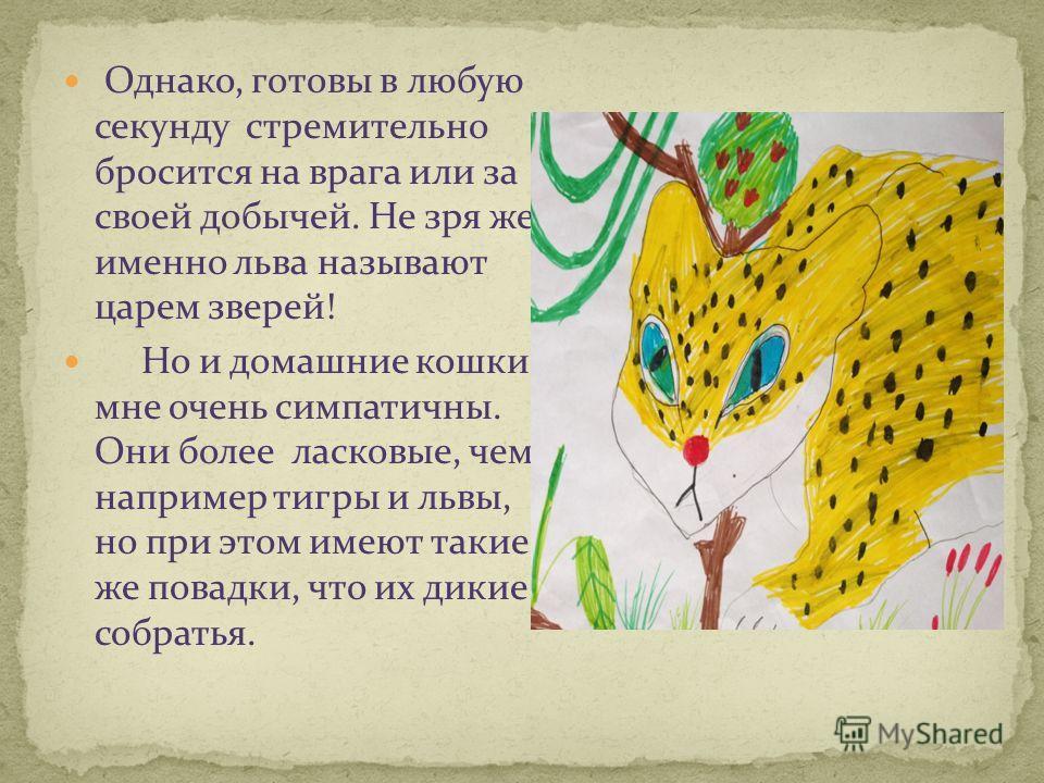 Однако, готовы в любую секунду стремительно бросится на врага или за своей добычей. Не зря же именно льва называют царем зверей! Но и домашние кошки мне очень симпатичны. Они более ласковые, чем, например тигры и львы, но при этом имеют такие же пова