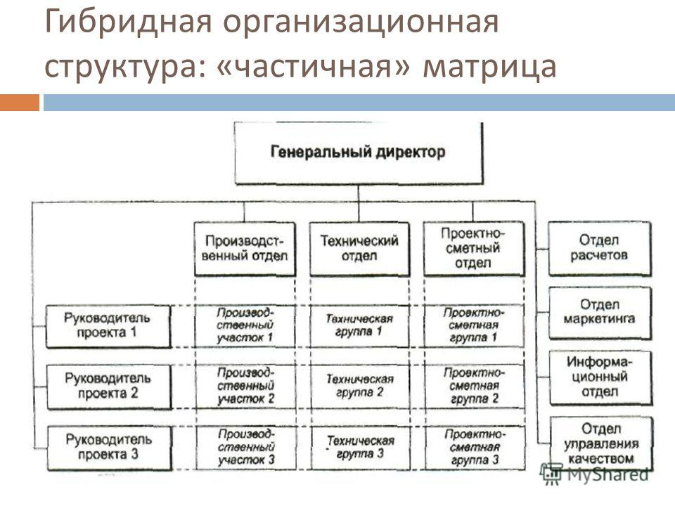 Гибридная организационная структура : « частичная » матрица