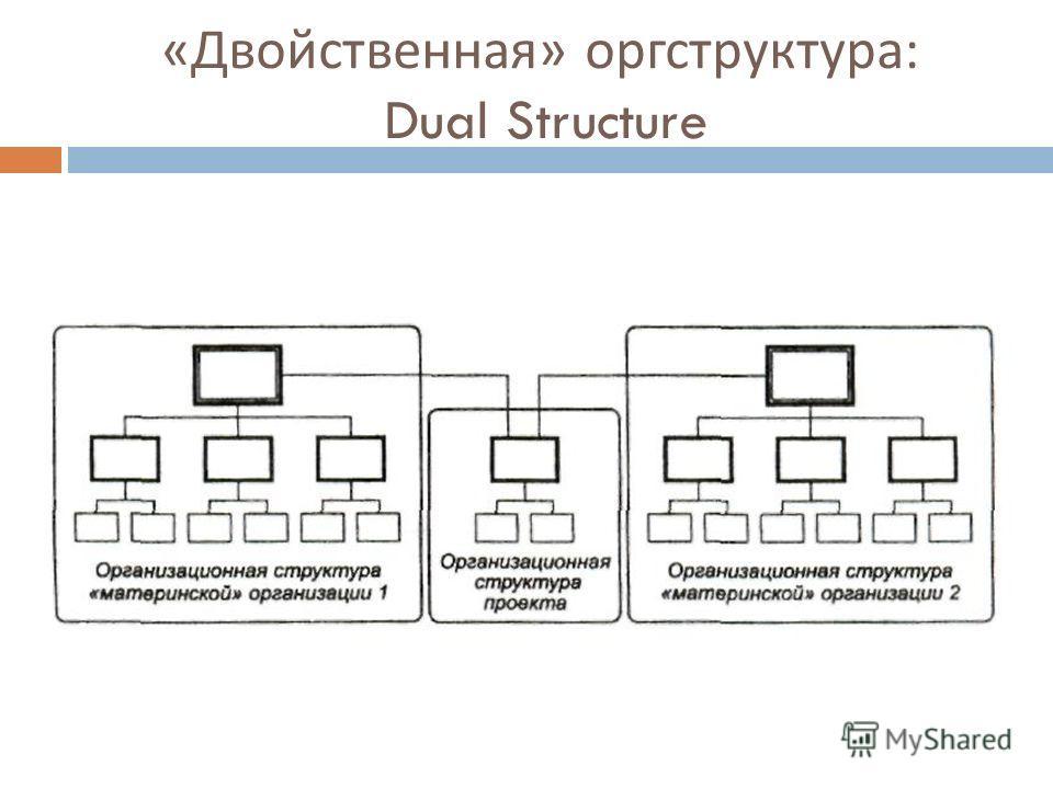 « Двойственная » оргструктура : Dual Structure
