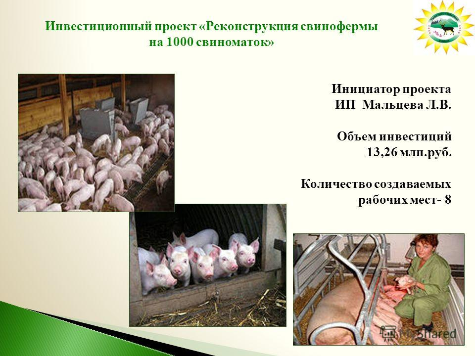 Инвестиционный проект «Реконструкция свинофермы на 1000 свиноматок» Инициатор проекта ИП Мальцева Л.В. Объем инвестиций 13,26 млн.руб. Количество создаваемых рабочих мест- 8