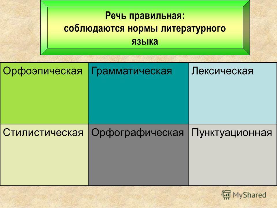 Речь правильная: соблюдаются нормы литературного языка Орфоэпическая ГрамматическаяЛексическая Стилистическая ОрфографическаяПунктуационная