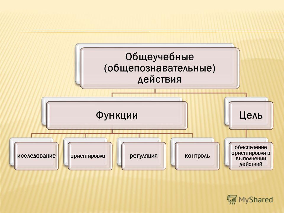 Общеучебные (обще познавательные) действия Функции исследование ориентировка регуляция контроль Цель обеспечение ориентировки в выполнении действий