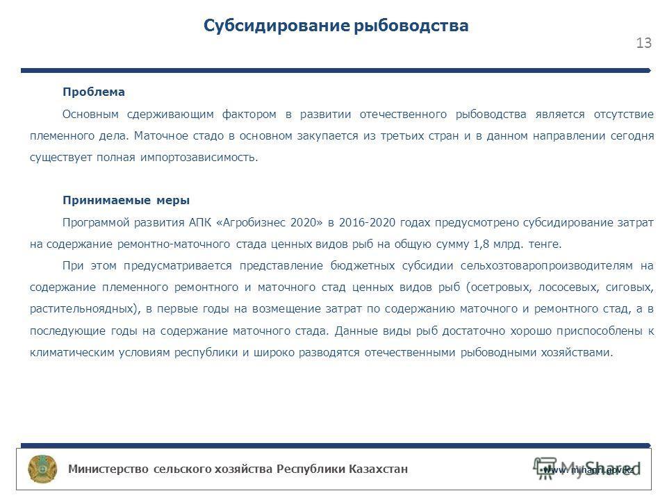 Министерство сельского хозяйства Республики Казахстан www. minagri.gov.kz 13 Субсидирование рыбоводства Проблема Основным сдерживающим фактором в развитии отечественного рыбоводства является отсутствие племенного дела. Маточное стадо в основном закуп