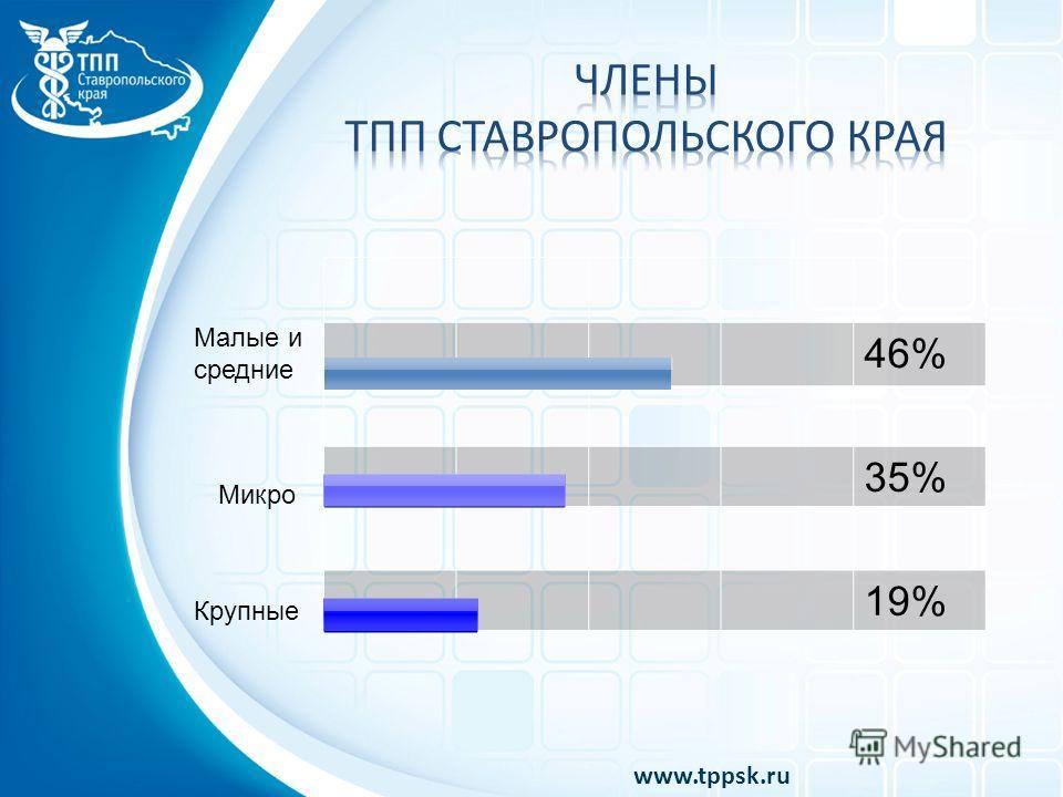 46% 35% 19% Крупные Малые и средние Микро www.tppsk.ru
