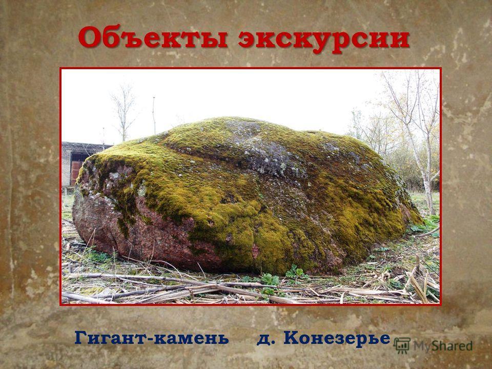 Объекты экскурсии Гигант-камень д. Конезерье