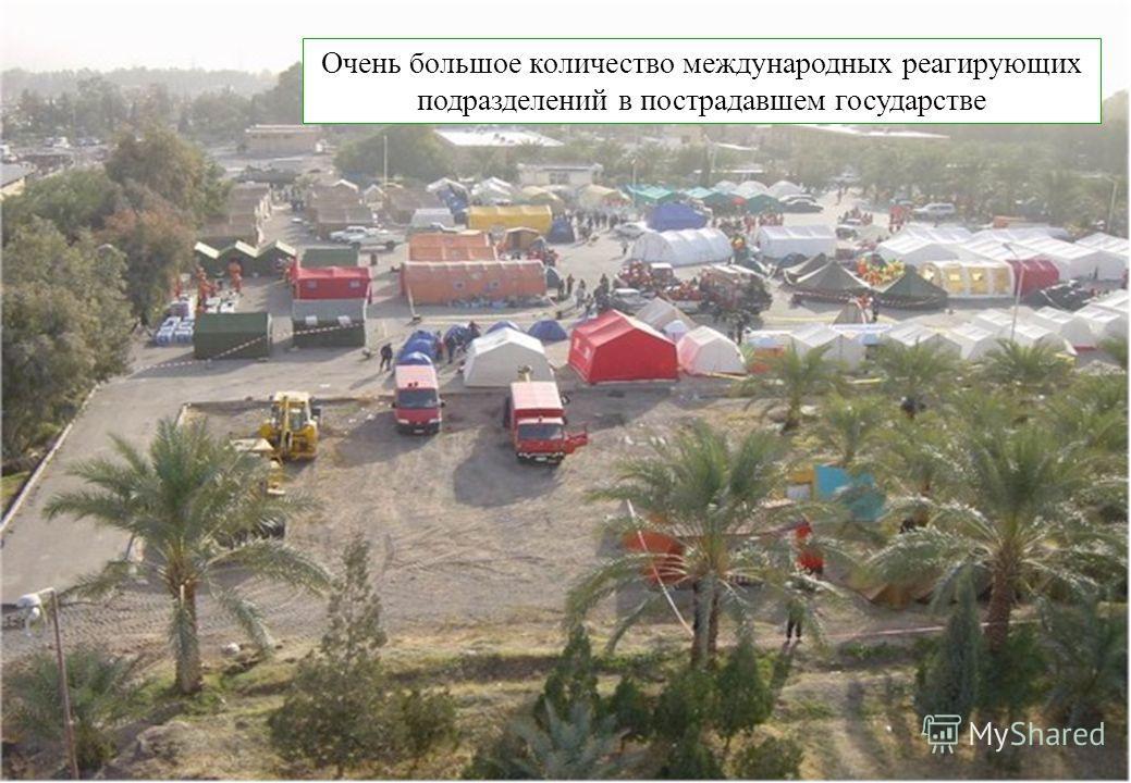 United Nations Disaster Assessment and Coordination FCSS Очень большое количество международных реагирующих подразделений в пострадавшем государстве