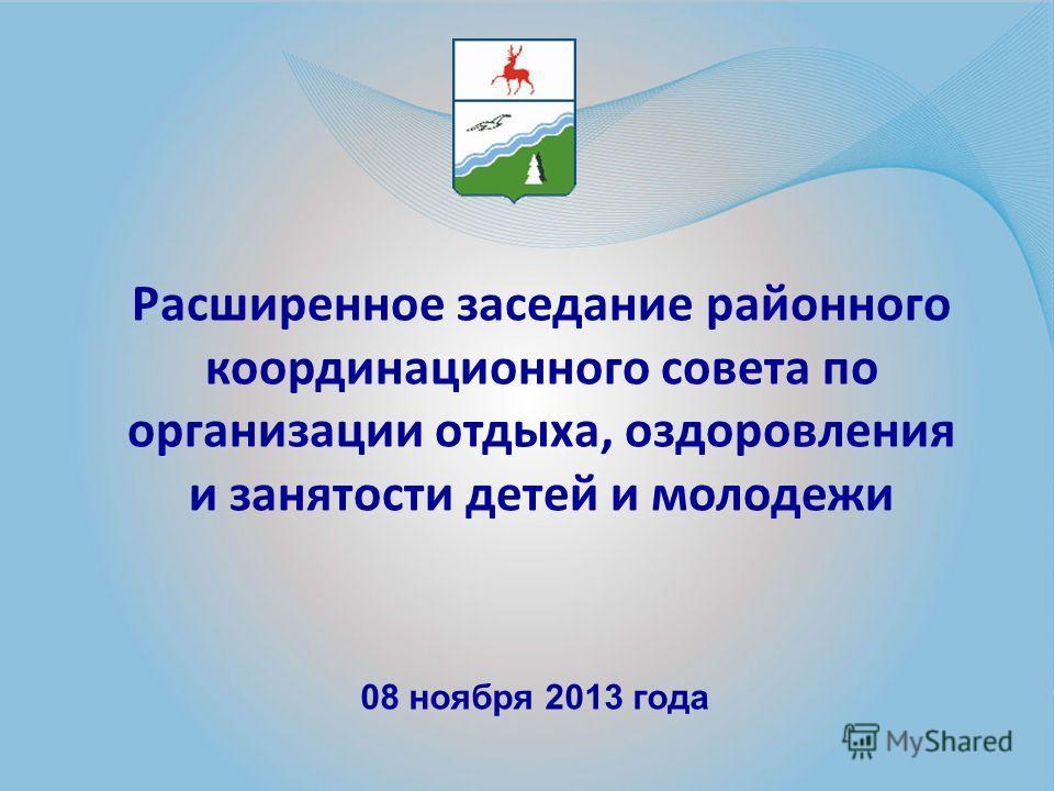 Расширенное заседание районного координационного совета по организации отдыха, оздоровления и занятости детей и молодежи 08 ноября 2013 года