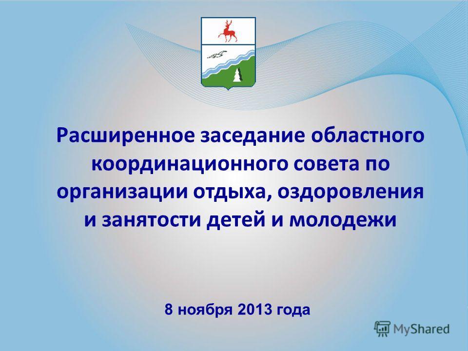 Расширенное заседание областного координационного совета по организации отдыха, оздоровления и занятости детей и молодежи 8 ноября 2013 года