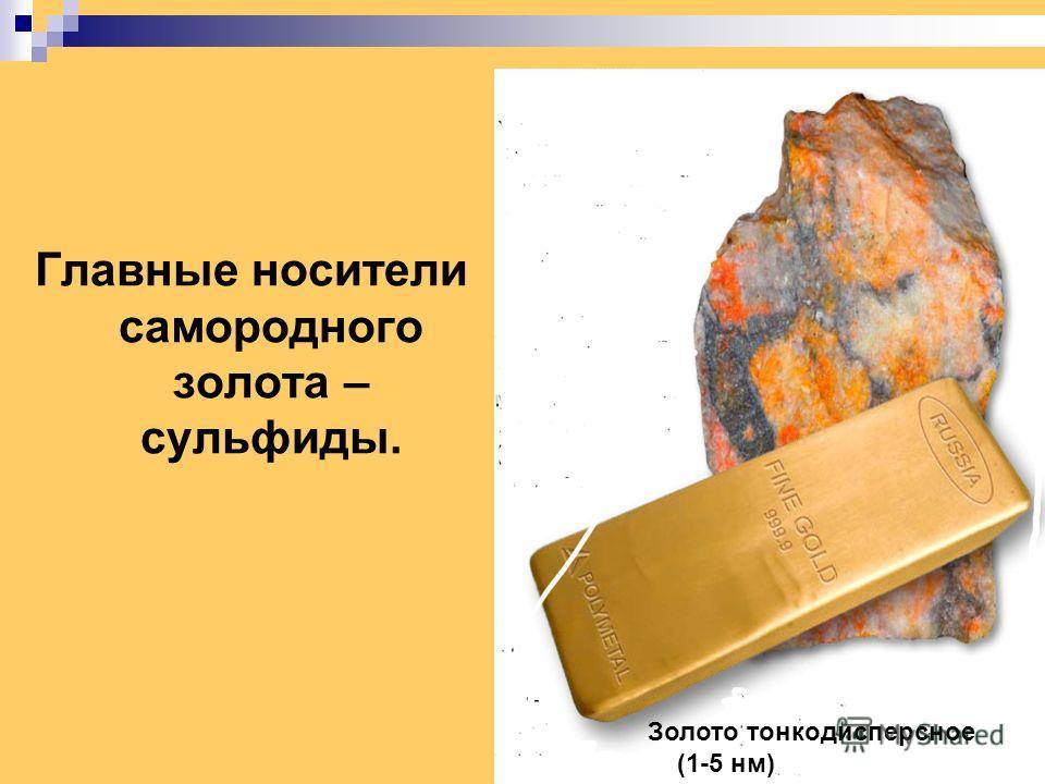 Главные носители самородного золота – сульфиды. Золото тонкодисперсное (1-5 нм)