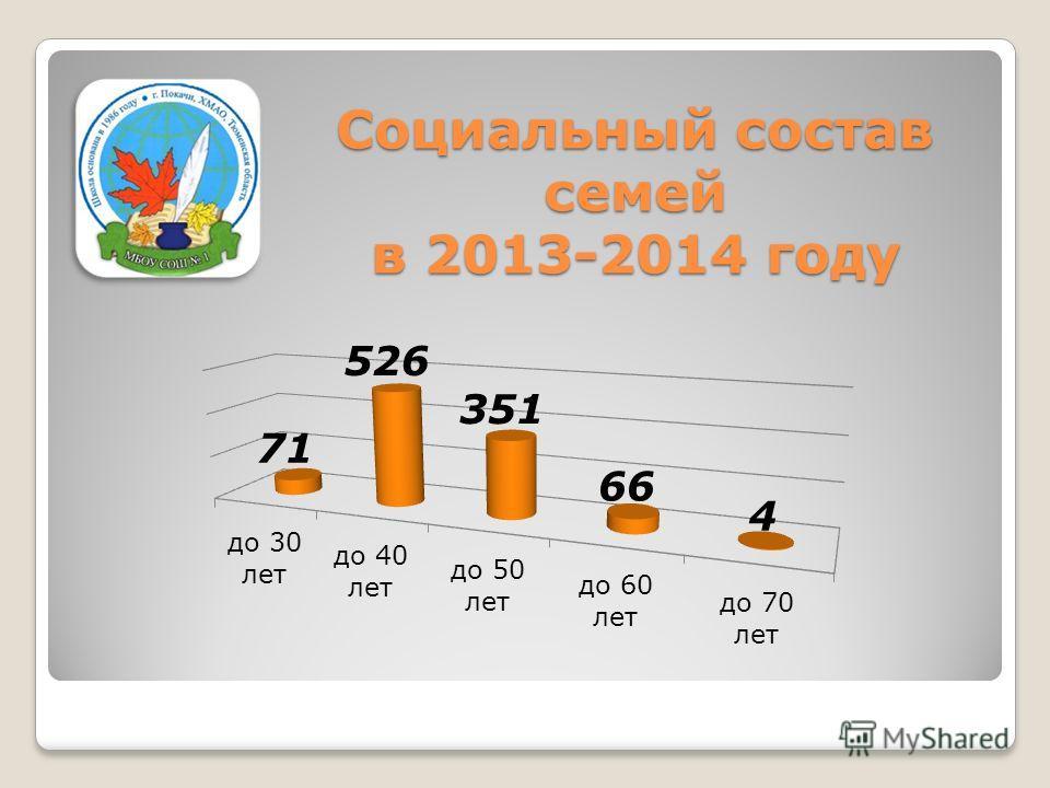 Социальный состав семей в 2013-2014 году