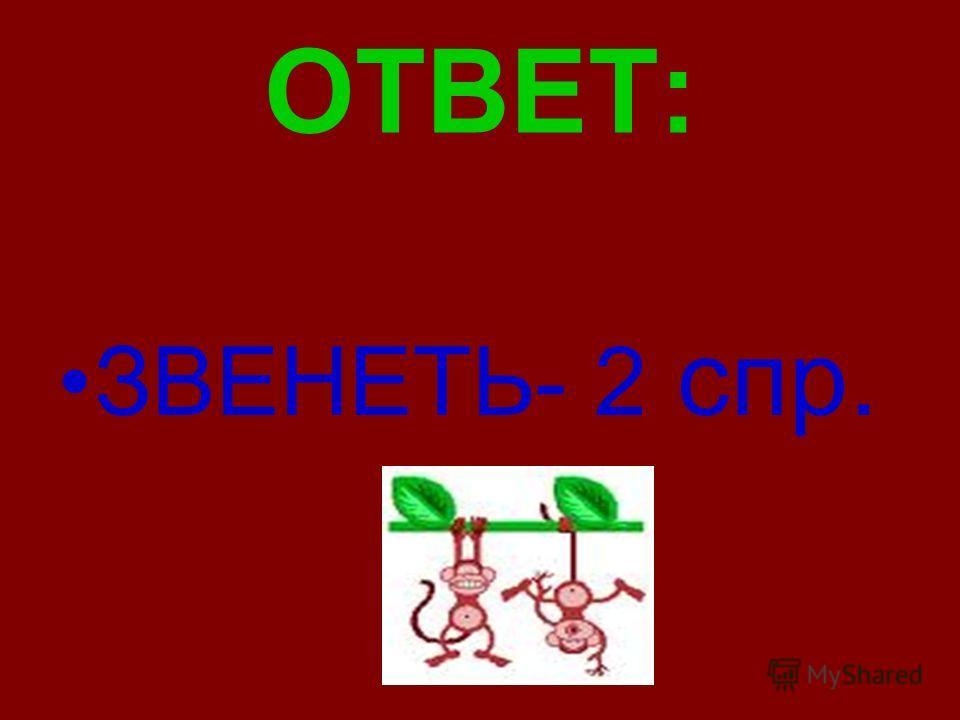 ОТВЕТ: ЗВЕНЕТЬ- 2 спр.