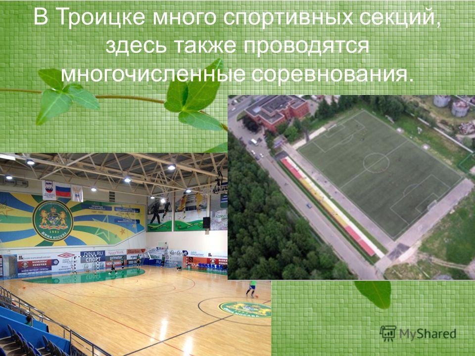 В Троицке много спортивных секций, здесь также проводятся многочисленные соревнования.