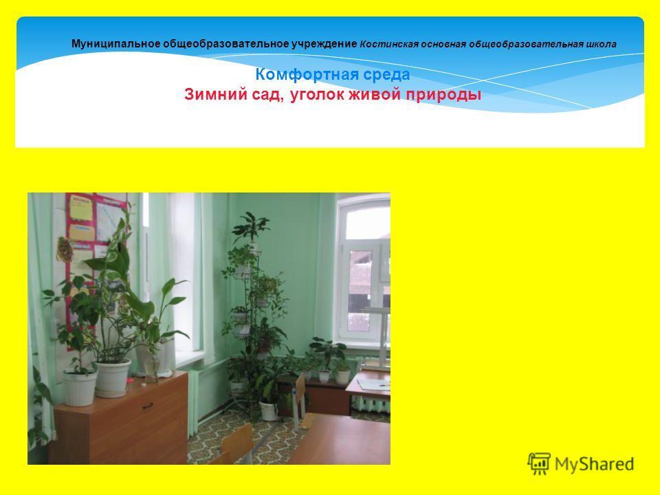 Муниципальное общеобразовательное учреждение Костинская основная общеобразовательная школа Комфортная среда Зимний сад, уголок живой природы
