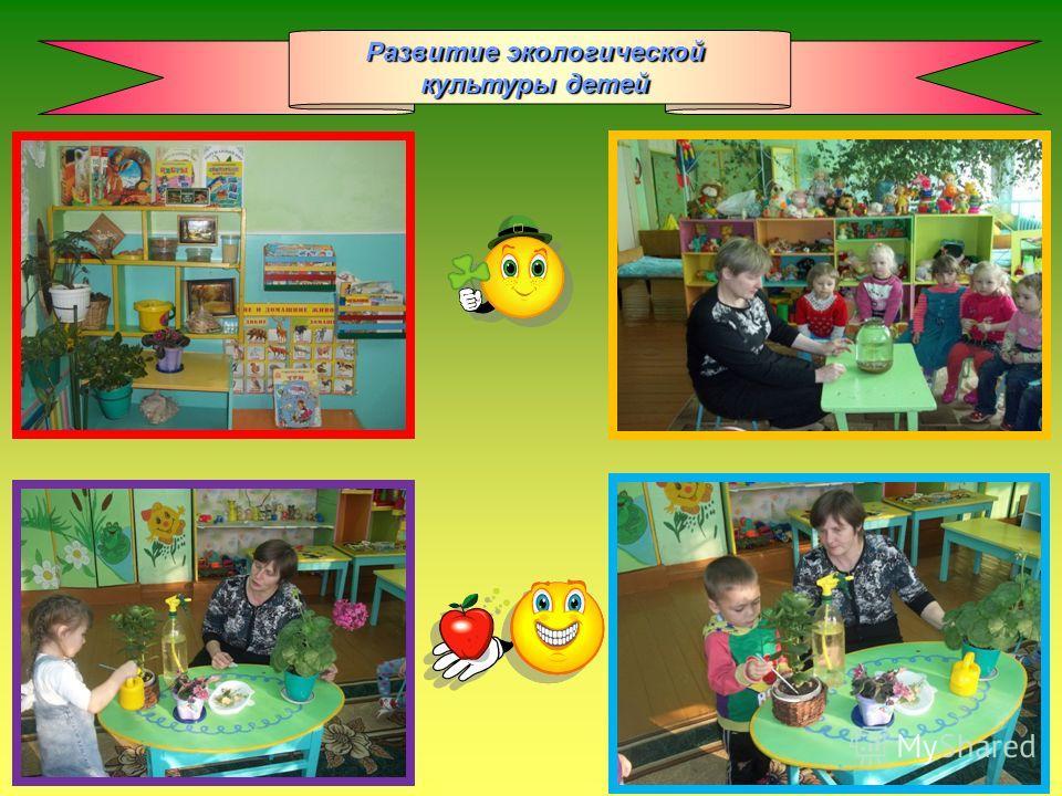 Развитие экологической культуры детей