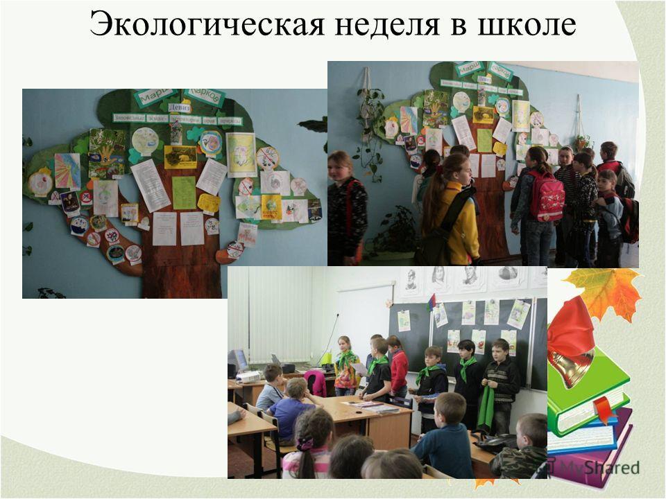 Экологическая неделя в школе