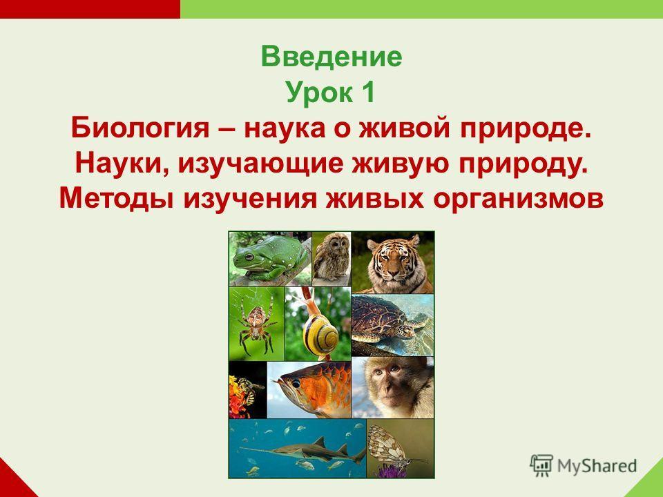 Введение Урок 1 Биология – наука о живой природе. Науки, изучающие живую природу. Методы изучения живых организмов