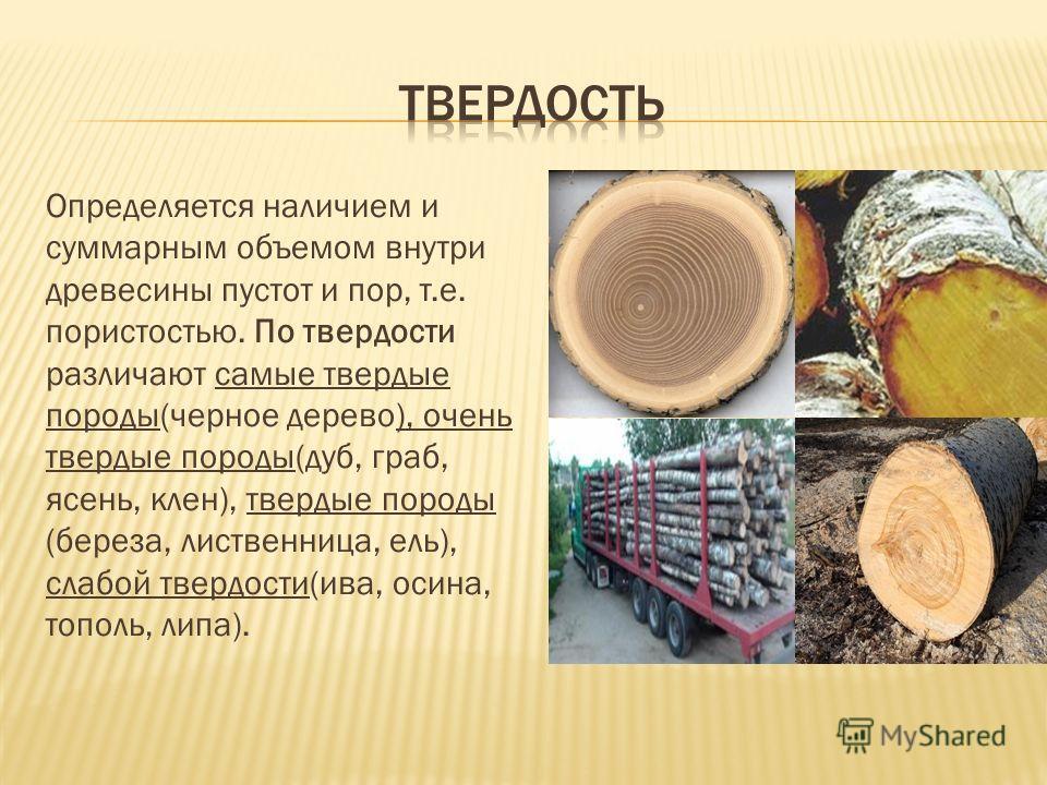 Определяется наличием и суммарным объемом внутри древесины пустот и пор, т.е. пористостью. По твердости различают самые твердые породы(черное дерево), очень твердые породы(дуб, граб, ясень, клен), твердые породы (береза, лиственница, ель), слабой тве