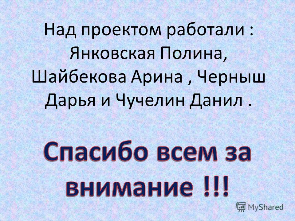 Над проектом работали : Янковская Полина, Шайбекова Арина, Черныш Дарья и Чучелин Данил.