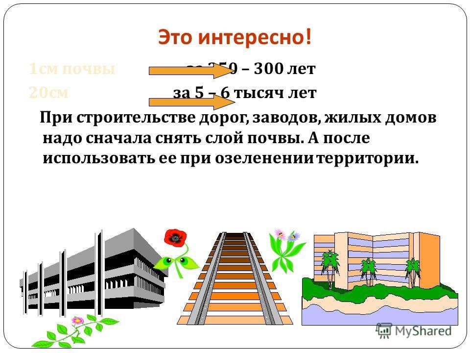 Это интересно ! 1 см почвы за 250 – 300 лет 20 см за 5 – 6 тысяч лет При строительстве дорог, заводов, жилых домов надо сначала снять слой почвы. А после использовать ее при озеленении территории.