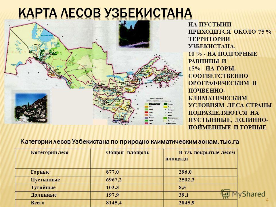 4 Категории леса Общая площадьВ т.ч. покрытые лесом площади Горные 877,0296,0 Пустынные 6967,22502,3 Тугайные 103.38,5 Долинные 197,939,1 Всего 8145,42845,9 Категории лесов Узбекистана по природно-климатическим зонам, тыс.га НА ПУСТЫНИ ПРИХОДИТСЯ ОКО