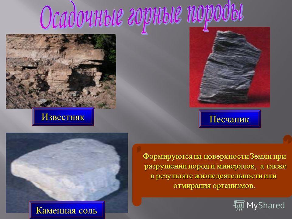 Известняк Каменная соль Песчаник Формируются на поверхности Земли при разрушении пород и минералов, а также разрушении пород и минералов, а также в результате жизнедеятельности или отмирания организмов.